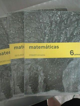 matemáticas 6 primaria. Savia.SM