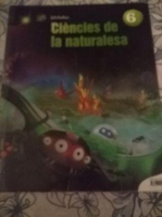 libros safa gava