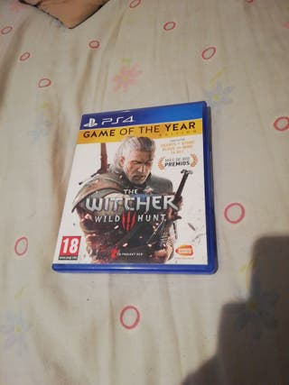 the witcher 3(wild hunt)