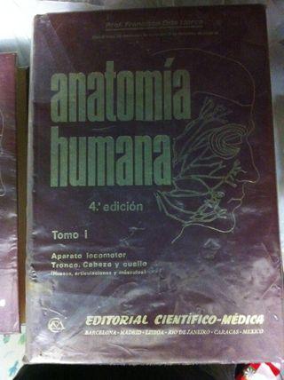 Libros Anatomía Humana