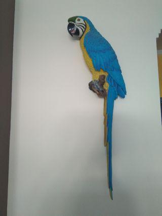 Loro Guacamayo decoracion