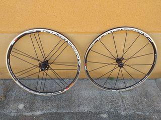 Ruedas Campagnolo Shamal Ultra Way fit REESTRENO