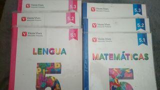 Lengua y Matemáticas 5 (precio del lote completo)