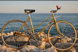 Bicicleta de paseo DAL 70's