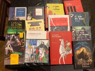 Libros de lectura secundaria