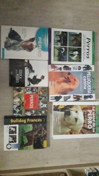 7 libros de perros