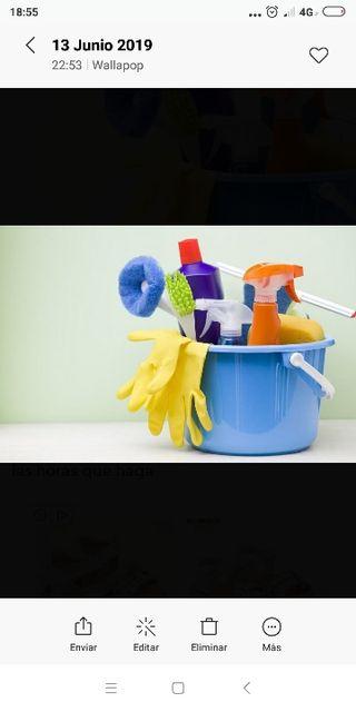 Bosco trabajo de limpieza tengo experiencia