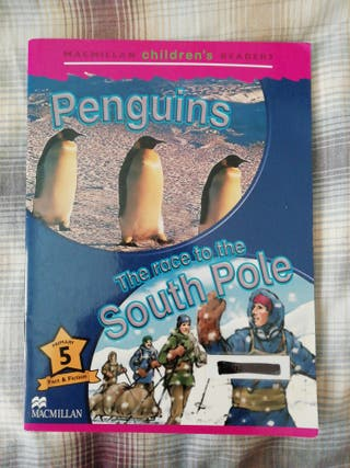 The race to the south pole