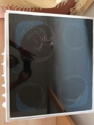 horno y vitro