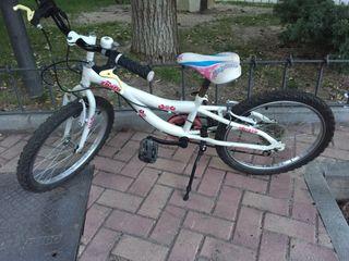 Bicicleta niña de 20 pulgadas