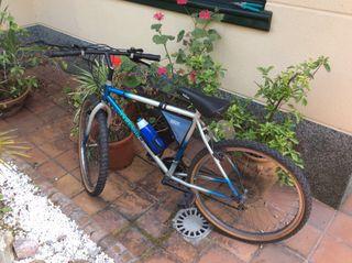 Bicicleta paseo adulto marca marengo