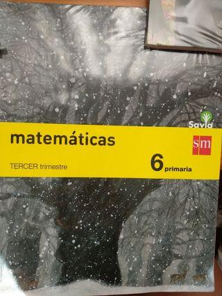 libro de texto 6 primaria matemáticas