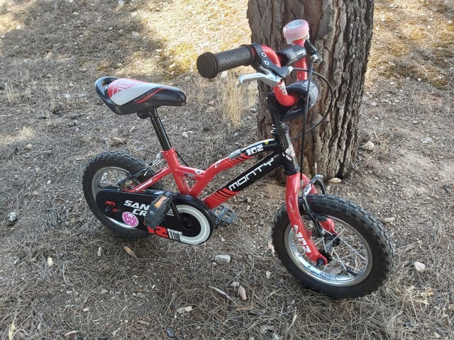 bicicleta Monty 102