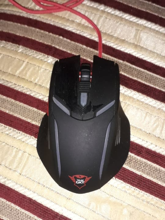 Raton gamer