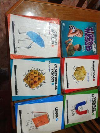 Libros 6* de primaria de Anaya