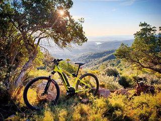 BIcicleta electrica 29 bergamount