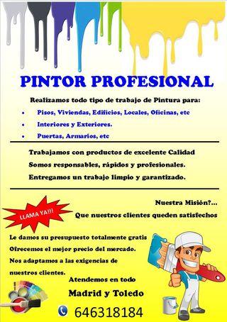PINTOR PROFESIONAL