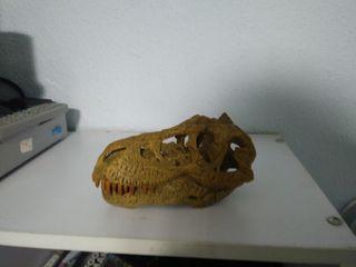 craneo t-rex completo