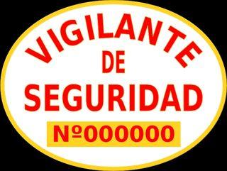 Temario 2019 VIGILANTE DE SEGURIDAD+test de EXAMEN