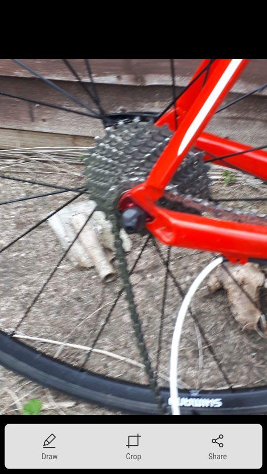 Forme Thorpe pro bike