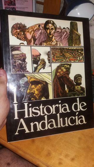 Libro: HISTORIA DE ANDALUCÍA. TOMO 1