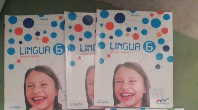 Lingua gallega 6°primaria