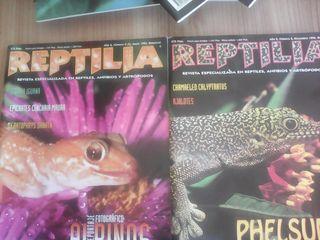Revista Reptilia