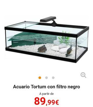 Tortuguero Terrario
