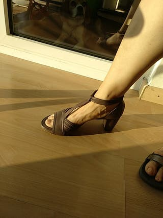 Zapatos mujer homers