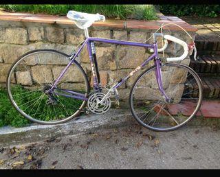 Bicicleta antigua dal vintage
