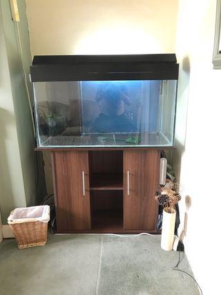 FISH TANK 250ltr
