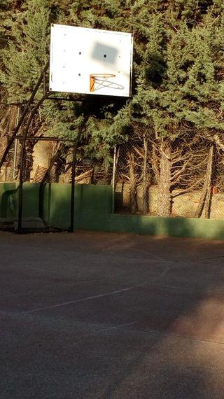 canasta de baloncesto reglamentaria