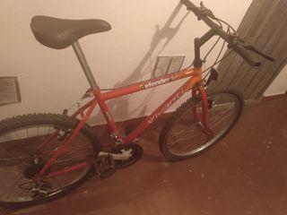 Bicicleta de montaña Junior con marchas.