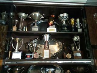 Trofeos, copas , de caza, mus,Dominó..