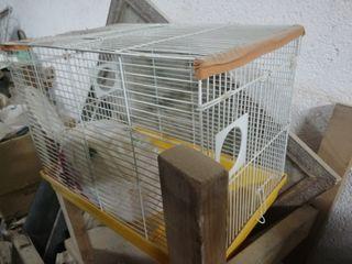 Jaulas hamster con tubos.