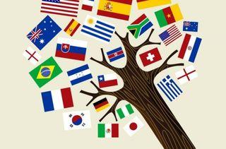 Apoyo escolar/ Clases de idiomas