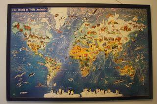 Lámina enmarcada con mapa del mundo (65x98)