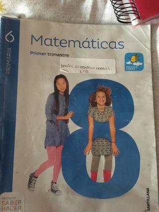 Libros Matematicas 6 primaria