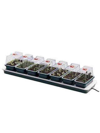 Cajas individuales para germinar