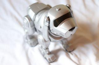 Perro de juguete Tekno