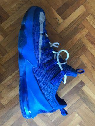 Zapatillas Baloncesto Nike Lebron
