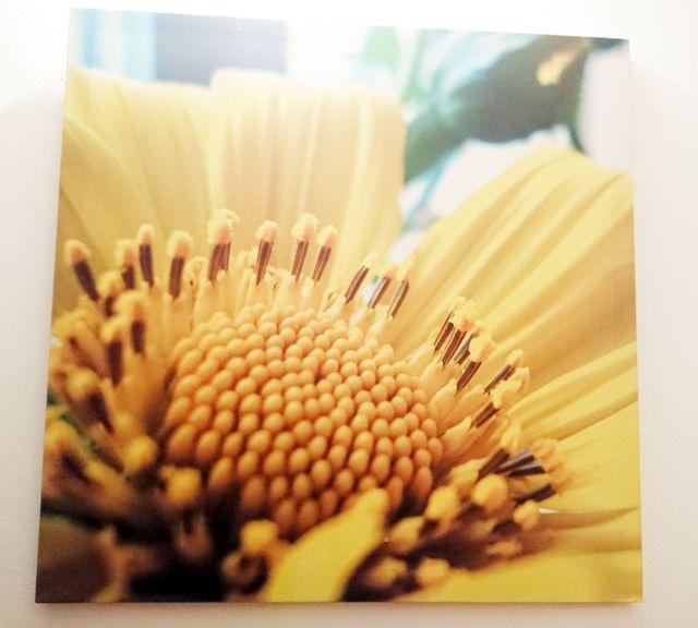 cuadro decorativo flor