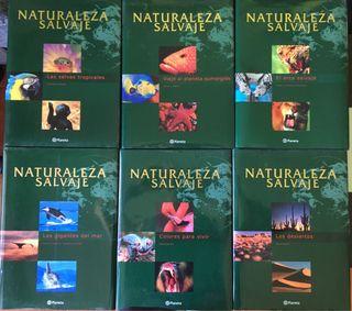 """Colección """"Naturaleza salvaje"""" BBC"""