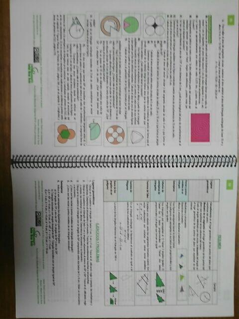 Matemáticas academicas. Teoría y problemas 3° ESO