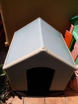 caseta casita perro