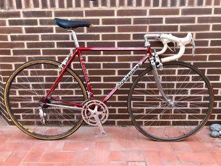 Bicicleta clásica colnago master