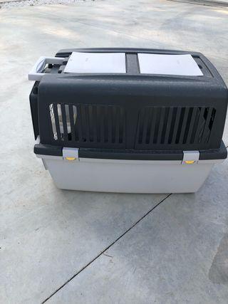 transporte para animales