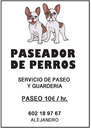 paseador de perros (alejandro)