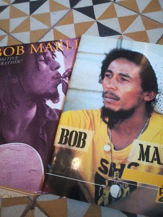 Lote 2 libros Bob Marley