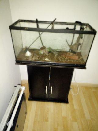 acuario 100 litros